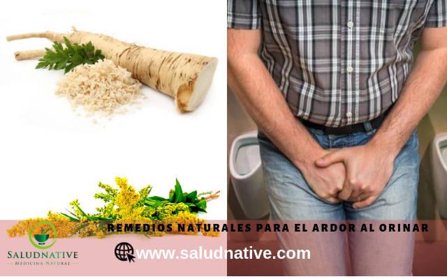 remedios naturales para infeccion de orina