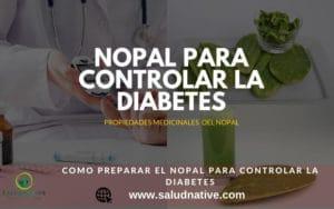 como preparar el nopal para la diabetes
