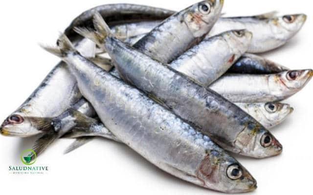 consome de sardinas para bajar el colesterol