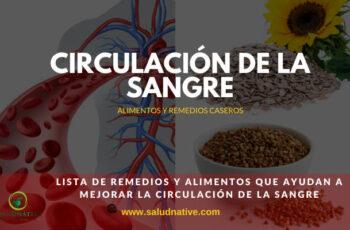 remedios caseros para mejorar la circulación de la sangre